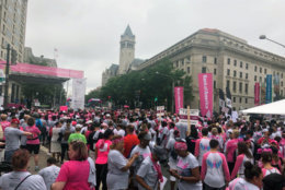 Walkers gather in Freedom Plaza for the Susan G. Komen Race for the cure. (WTOP/Melissa Howell)