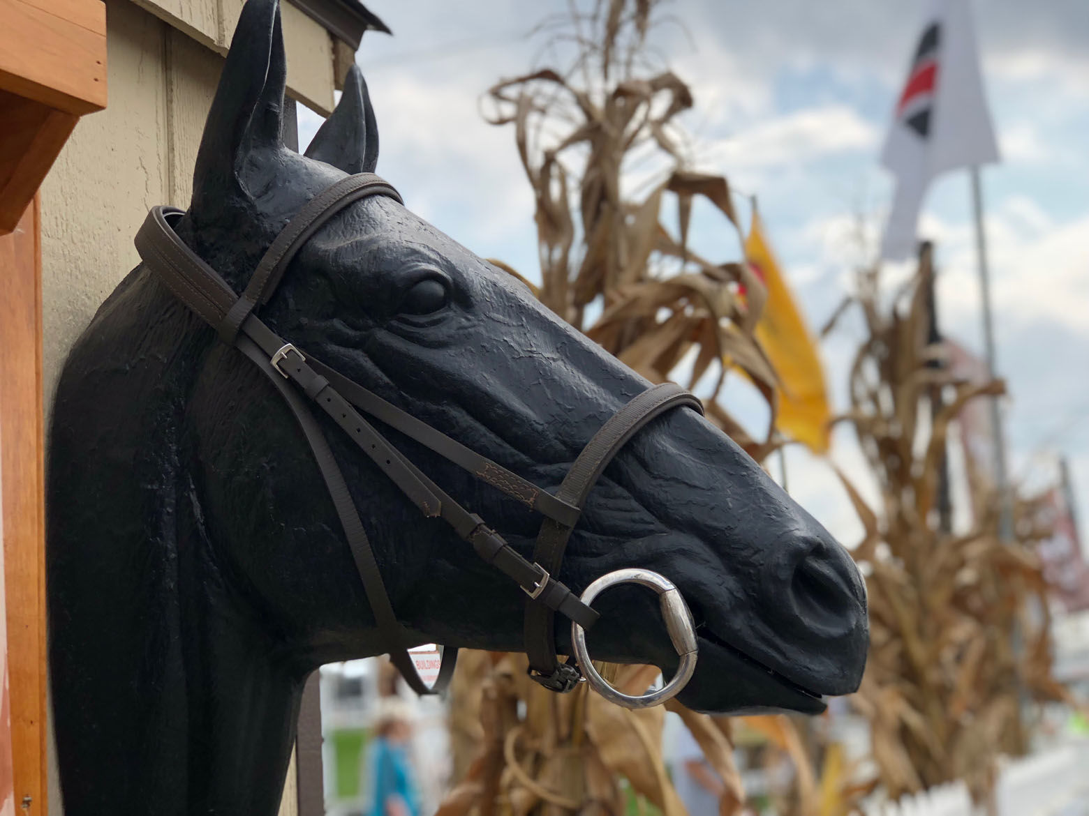Detail of the equestrian display at the Great Frederick Fair. (WTOP/Kate Ryan)