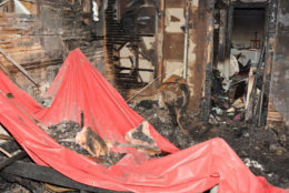 """The room where the boy was found was a """"complete flashover,"""" a fire investigator testified. """"This room got so hot that everything in this room burned."""" (Courtesy U.S. Attorney's Office for D.C.)"""