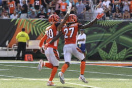Cincinnati Bengals free safety Jessie Bates (30) celebrates an interception with cornerback Dre Kirkpatrick (27) during the second half of an NFL football game against the Miami Dolphins in Cincinnati, Sunday, Oct. 7, 2018. The Bengals defeated the Dolphins 27-17. (AP Photo/Gary Landers)