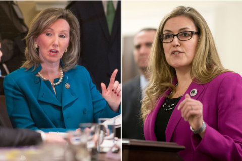 Comstock faces Wexton in high-profile race for Virginia's 10th District