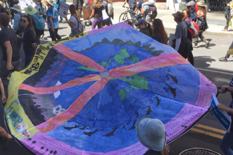 Mother Earth Project's 'Parachutes for the Planet' comes to Georgetown