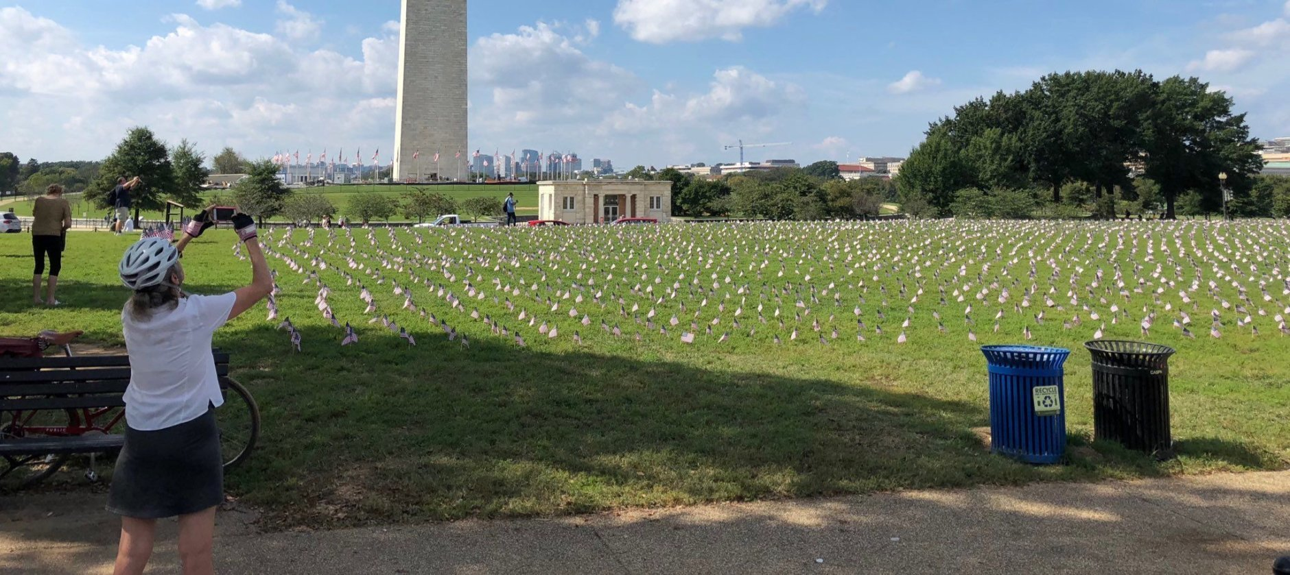 Planting what eventually looked like a carpet of fluttering American flags, veterans groups were on the National Mall Wednesday to raise awareness about veteran suicides.(WTOP/Kristi King)