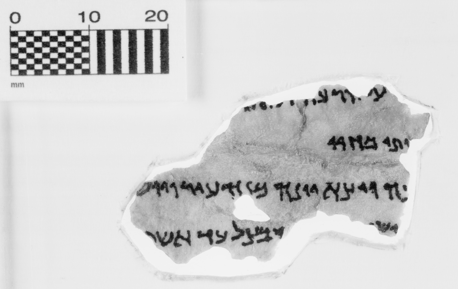 This fragment is identified as Jonah 4:2-5, and it is part of the Museum of the Bible's collection of 16 Dead Sea Scrolls fragments. (Courtesy Museum of the Bible)