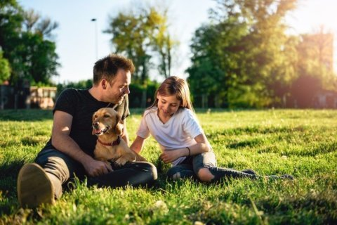 Is your dog aggressive? Here are some warning signs and what you can do