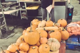 Pumpkins donated to Miriam's Kitchen as part of the effort by Pumpkins for the People 2017. (Courtesy Agricity)