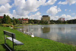 A typical winter scene on Lake Hollingsworth in Lakeland, Florida