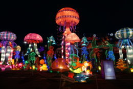 LightUP Fest will be one of the largest lighting displays on the East Coast, and will combine traditional Chinese lanterns with high-tech lighting technology. (Courtesy LightUP Fest)