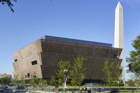 Smithsonian launches inaugural African American Film Festival