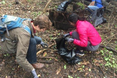PHOTOS: Hundreds help clean up Anacostia River's Kingman Island