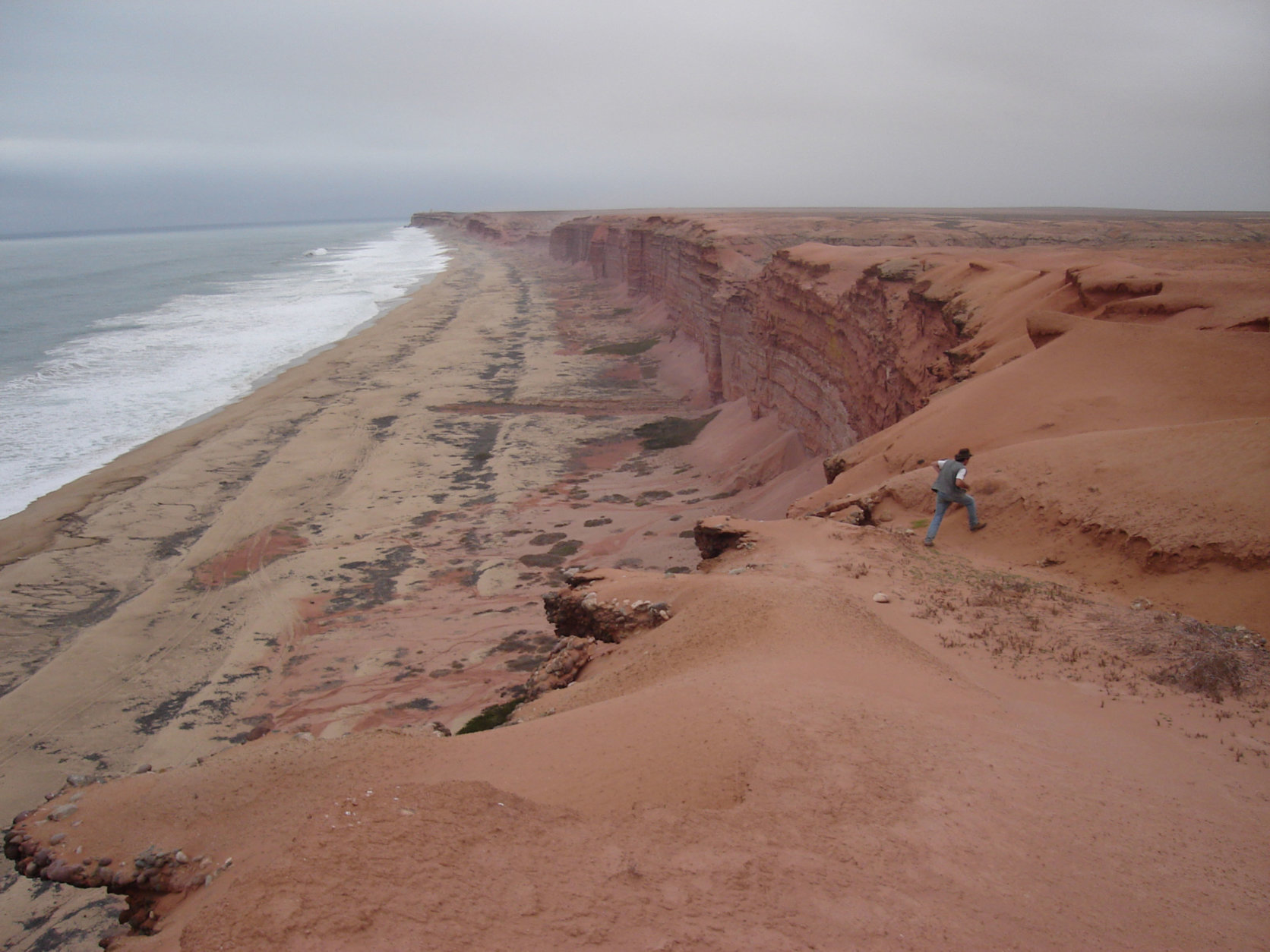 Modern cliffs of coastal Angola where Projecto Paleoangola paleontologists excavate fossils of life that once lived in Angola's ancient seas. (Projecto Paleoangola)