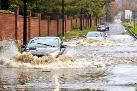 Drenching rains flood DC-area roads as record for wettest year swims into view