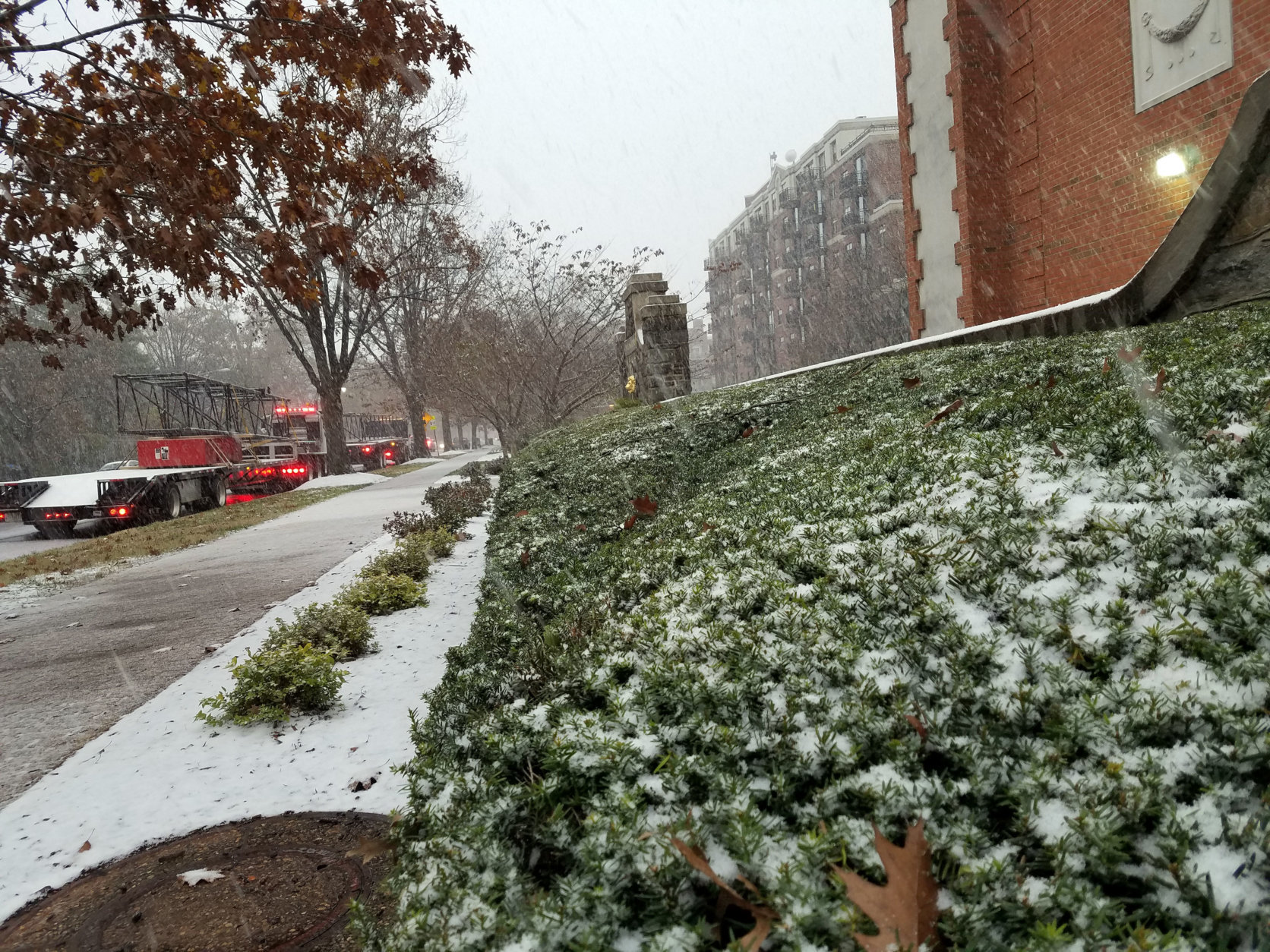 Snow collects along the streets and bushes in Northwest D.C. (WTOP/Will Vitka)