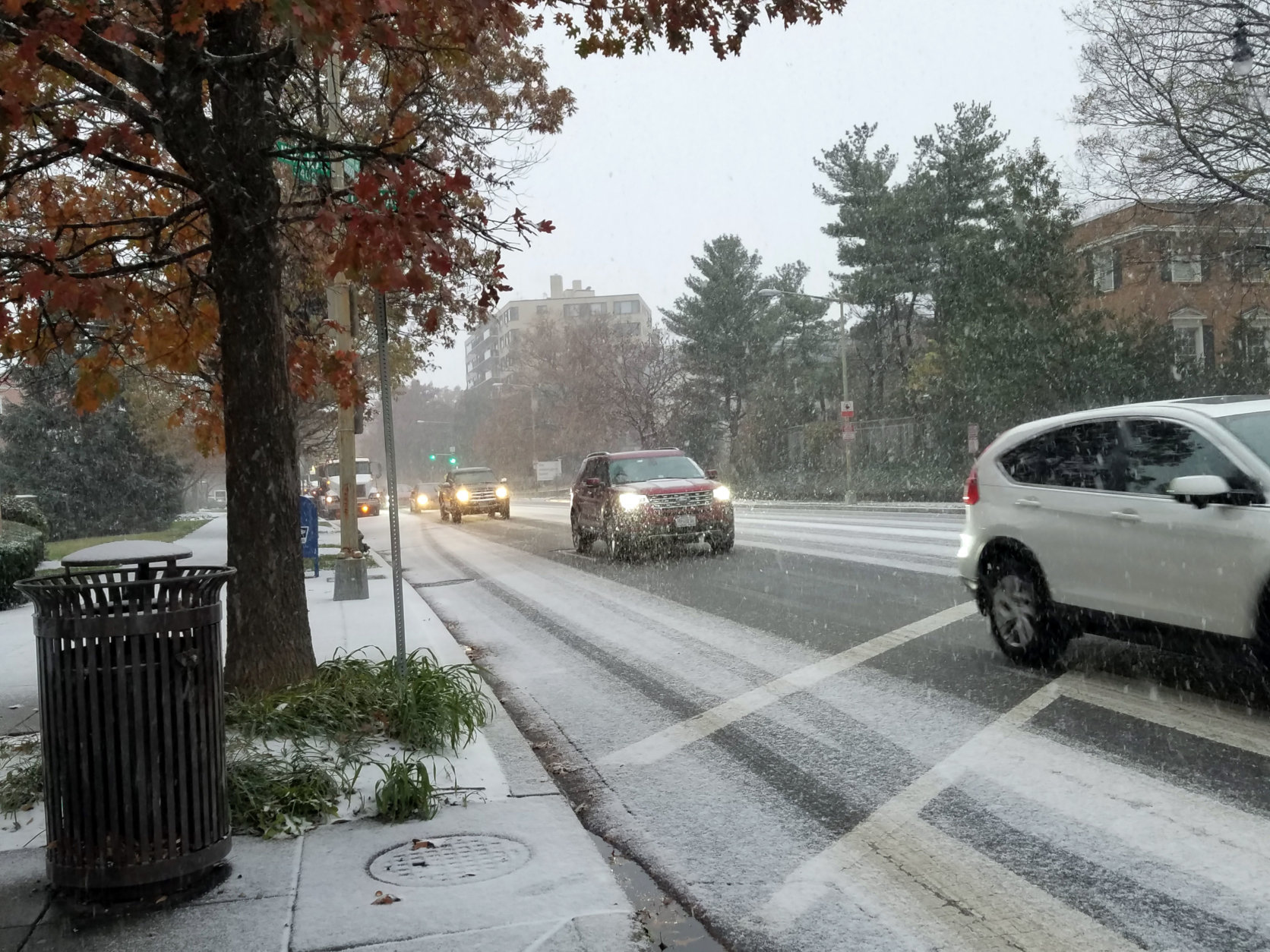 Cars make their way along Wisconsin Ave. in Northwest D.C.  Thursday. (WTOP/Will Vitka)