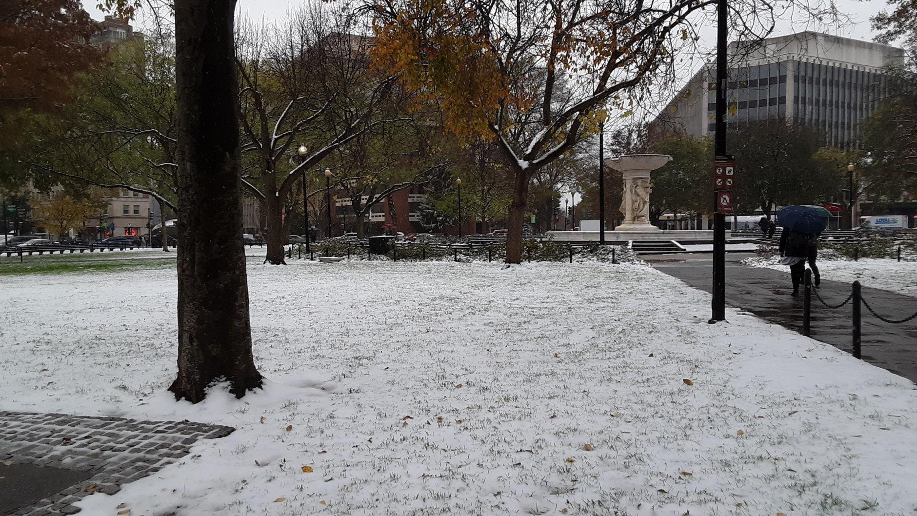 Snow falls around Dupont Circle in D.C. (WTOP/Lisa Winer)