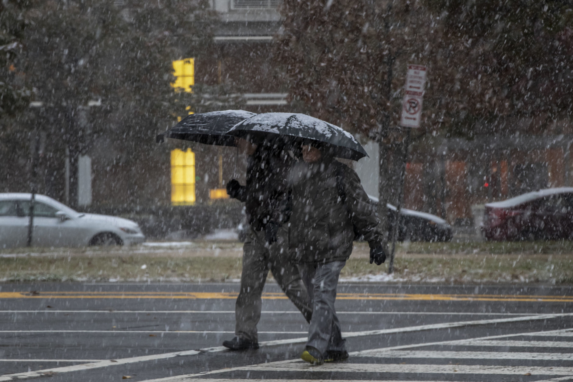 The first snow of the season in Washington, Thursday, Nov. 15, 2018. (AP Photo/J. Scott Applewhite)