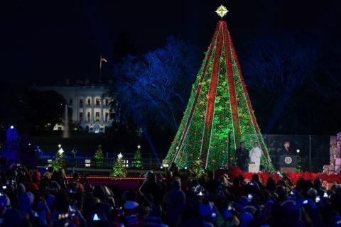 PHOTOS: National Christmas Tree lighting 2018