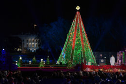 President Donald Trump speaks as he and first lady Melania Trump attend the annual National Christmas Tree Lighting on the Ellipse in Washington, Wednesday, Nov. 28, 2018. (AP Photo/Susan Walsh)