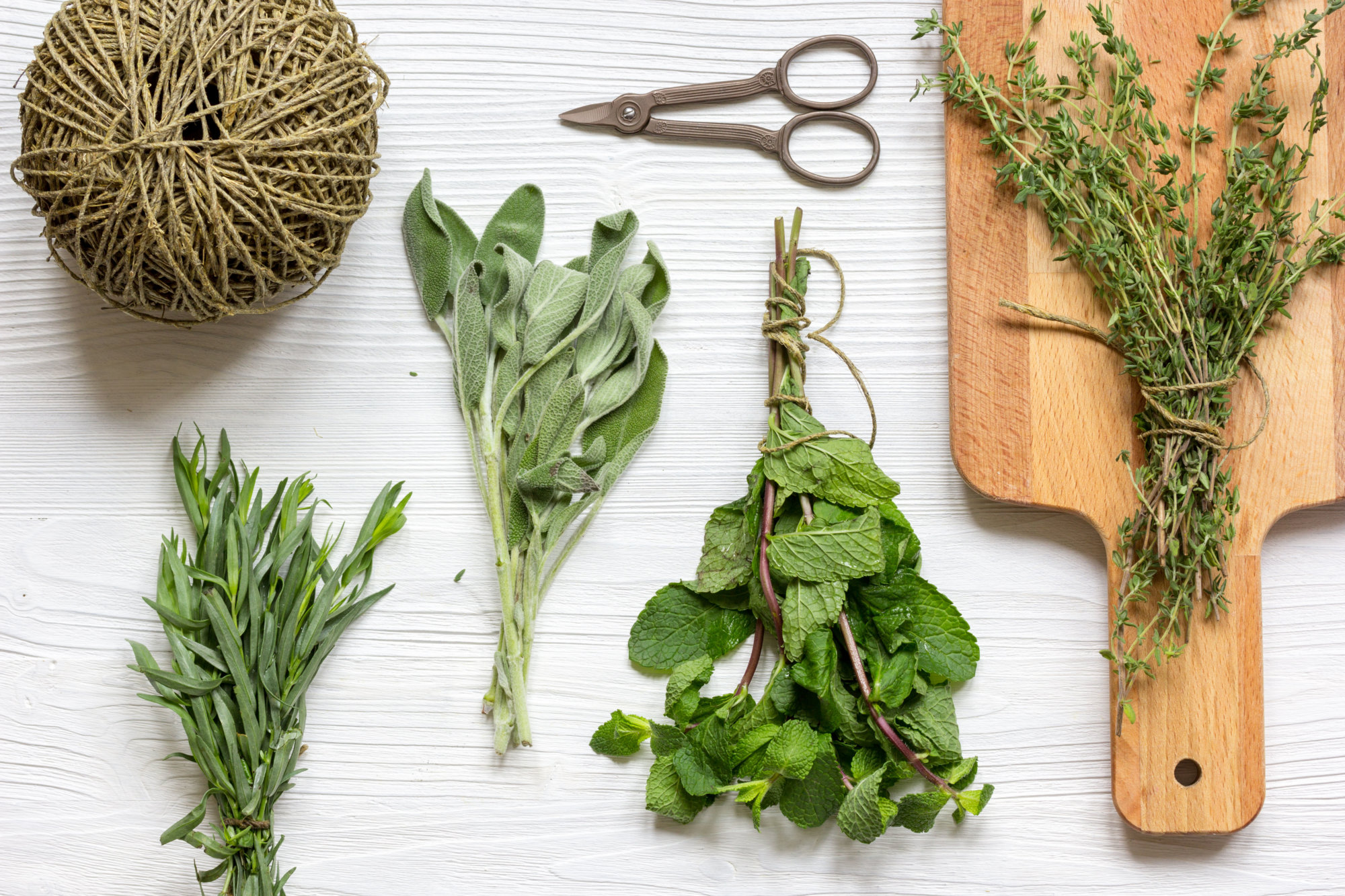 fresh herbs preparation to be dried top view on wooden background