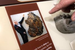 Ancient oysters along the Angola coast were the size of a human being. (WTOP/Kristi King)