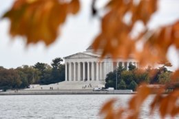 The Tidal Basin is a beautiful place to see and experience the fall foliage. (WTOP/Dave Dildine)