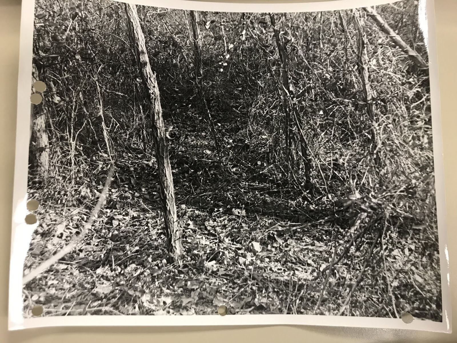 A 1972 police photo of the area where the unidentified woman was killed. (Courtesy Prince George's County Police Department)