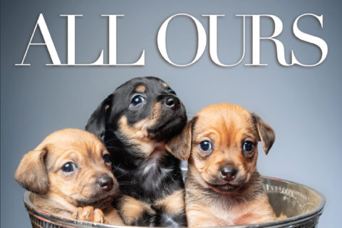 Let's get a round of appaws — the 2019 Capitals Canine Calendar is here
