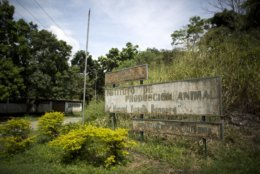This Oct 26, 2018 photo, shows the run down sign of the Animal Production Institute of the Central University of Venezuela, in Maracay, Venezuela. The school's budget has been frozen for over a decade, leading security guards to walk off the job and leave the campus an open target, university officials said. (AP Photo/Ariana Cubillos)