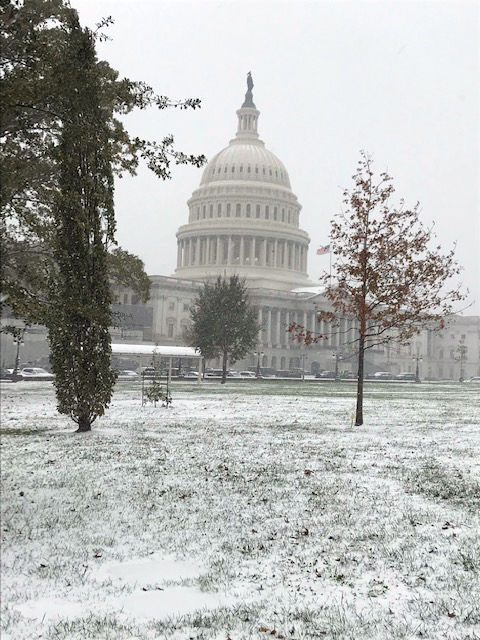 Snow collects on Capitol Hill in Washington. (WTOP/Mitch Miller)
