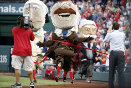 "The Washington Nationals ""Racing Presidents,"" mascots run during a break in a baseball game between the Washington Nationals and the Tampa Bay Rays at Nationals Park, Wednesday, June 17, 2015, in Washington. (AP Photo/Alex Brandon)"