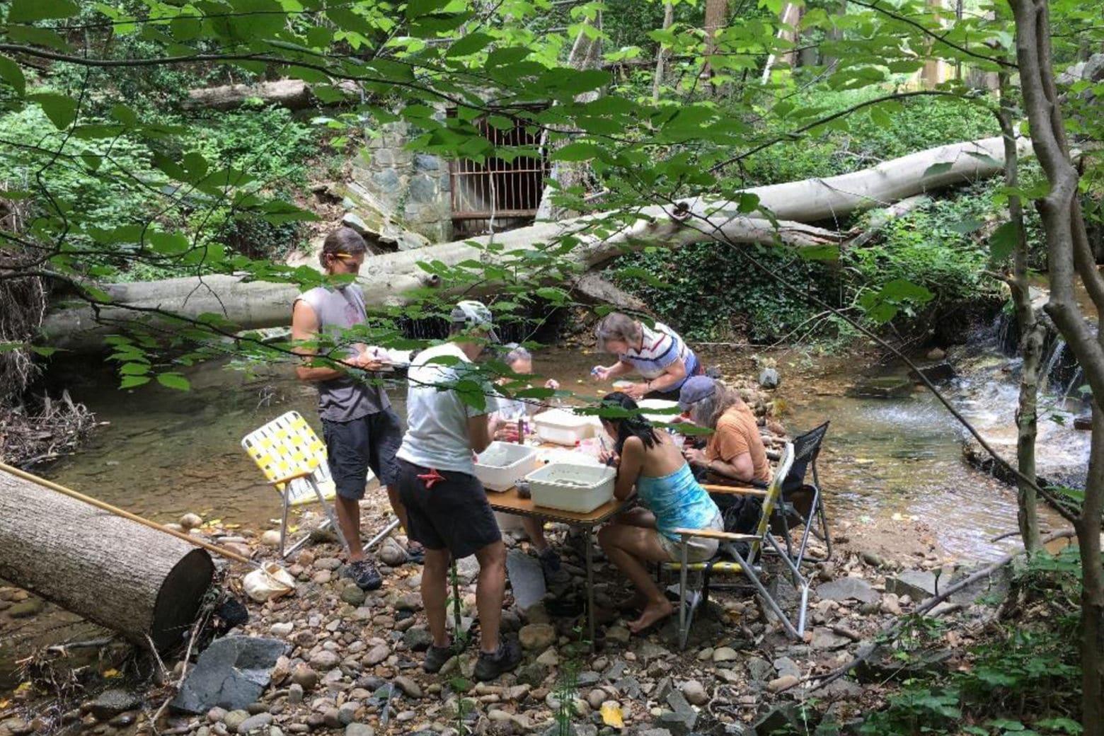Members of the Audubon Naturalist Society gather in Rock Creek Park. (Audubon Naturalist Society)