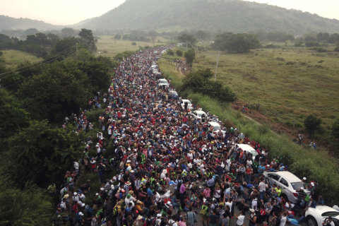 What happened to the migrant caravans?