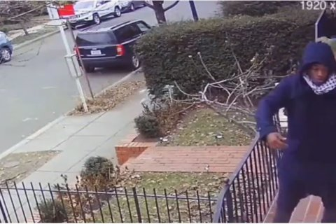 WATCH: DC porch pirate dances as if no one's watching, then steals packages