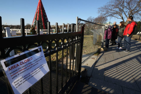 National Christmas Tree site reopens during shutdown