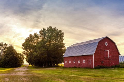 Survey to measure financial well-being of Virginia farmers, ranchers
