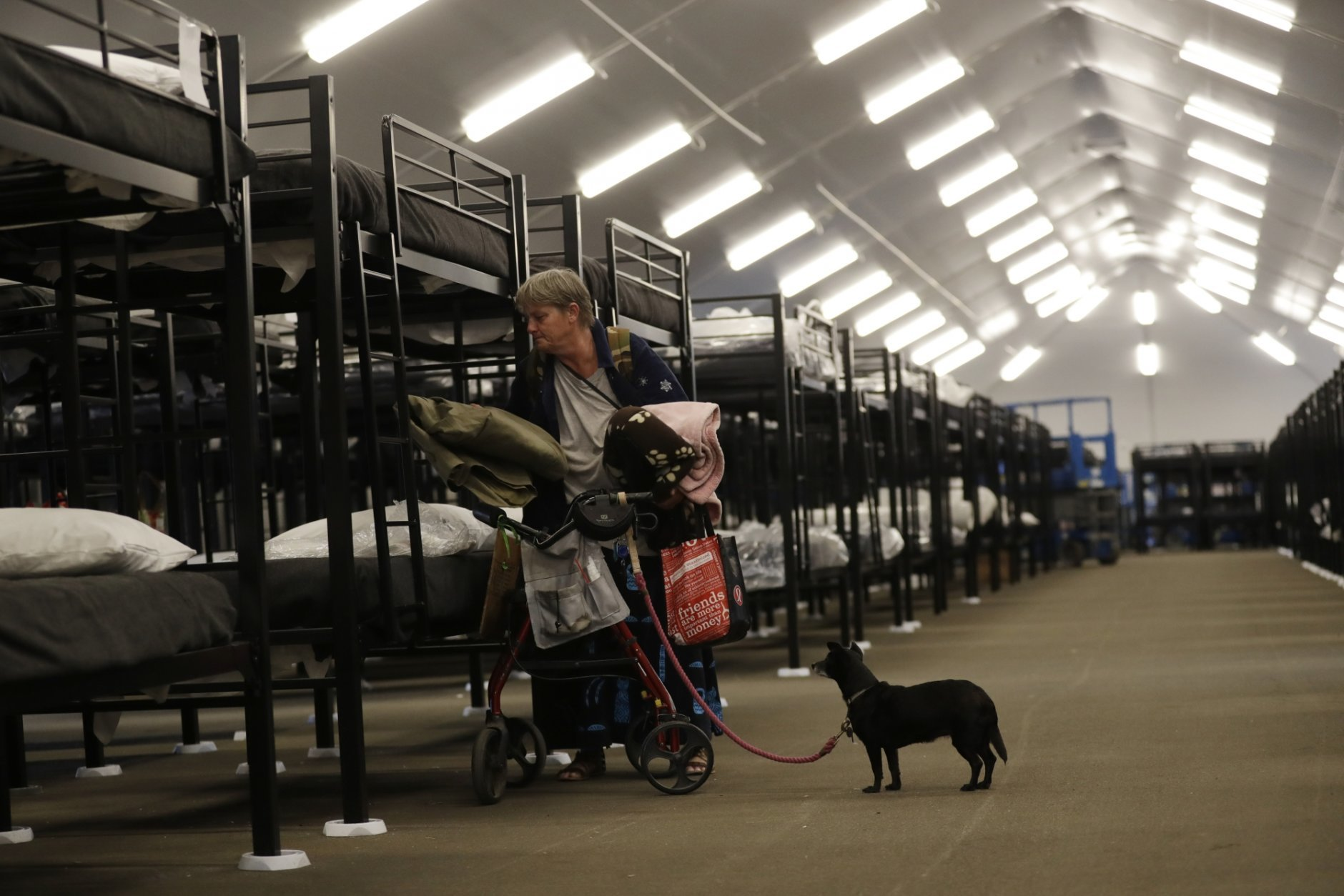 File - In this Dec. 1, 2017, file photo, Verna Vasbinder prepares her new bunk in the city's new Temporary Bridge Shelter for the homeless as her dog, Lucy Lui, looks on in San Diego. A new federal report says the number of people living on the streets in Los Angeles and San Diego, two epicenters of a West Coast homelessness crisis, fell this year, suggesting possible success in those cities' efforts to combat the problem. Homelessness overall was up slightly across the country, although the report did not provide a complete picture of the problem. (AP Photo/Gregory Bull, File)