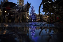 Horse-drawn carriages ride past a Christmas tree in the Grand Square of downtown Brussels, Thursday, Dec. 20, 2018. (AP Photo/Francisco Seco)