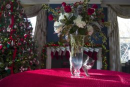 "The Pence family cat ""Hazel"" walks around the flower vase during a tour of the holiday decorations at the Vice President's residence, Thursday, Dec. 6, 2018, in Washington. (AP Photo/Alex Brandon)"