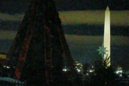 An unlit National Christmas Tree is seen with the National Monument behind it. (Courtesy Shirley Courteau)