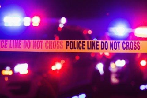 Police identify woman fatally struck on Richmond Highway