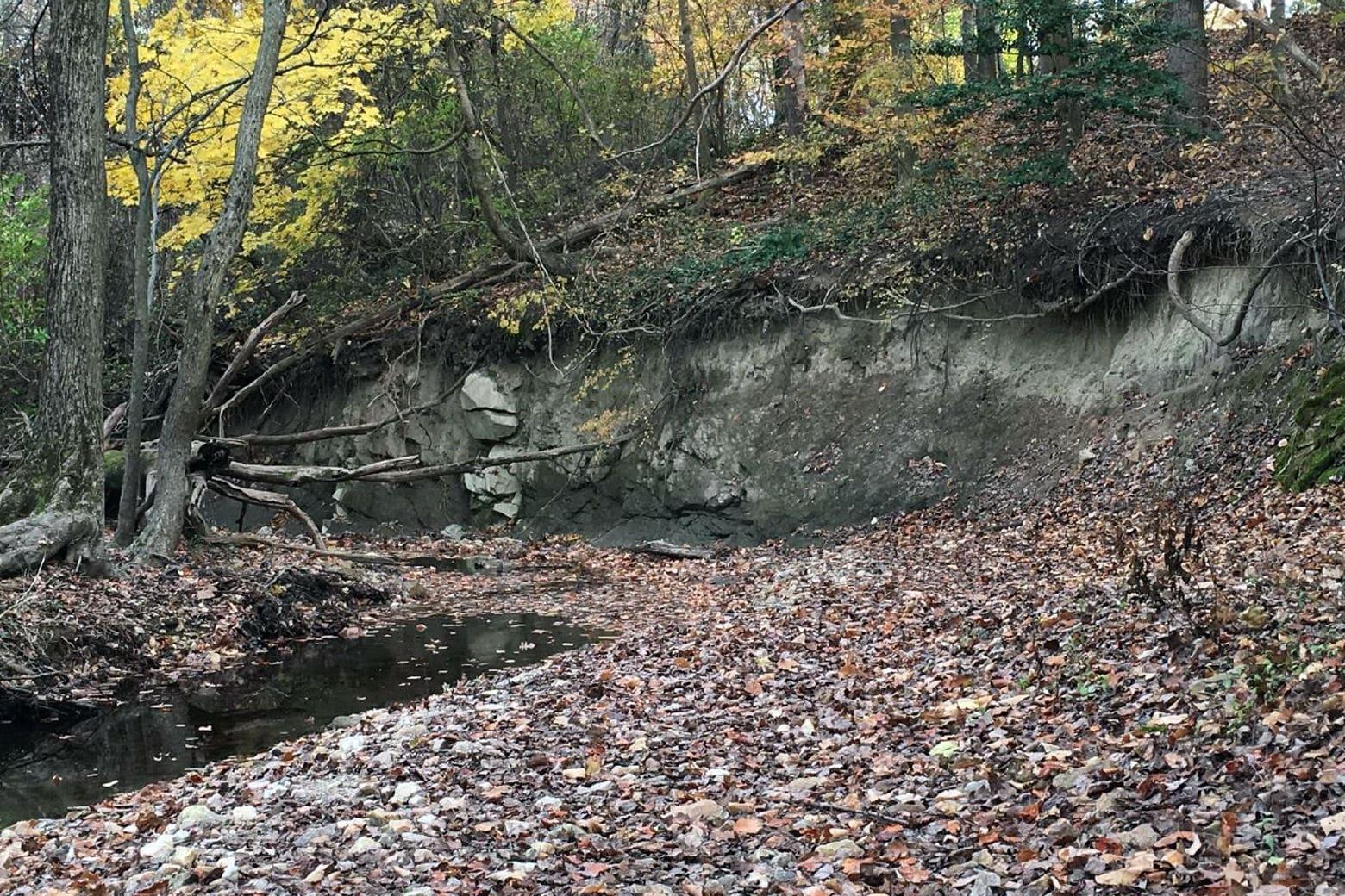Bank erosion at Pinehurst Branch. (Courtesy Cathy Wiss)