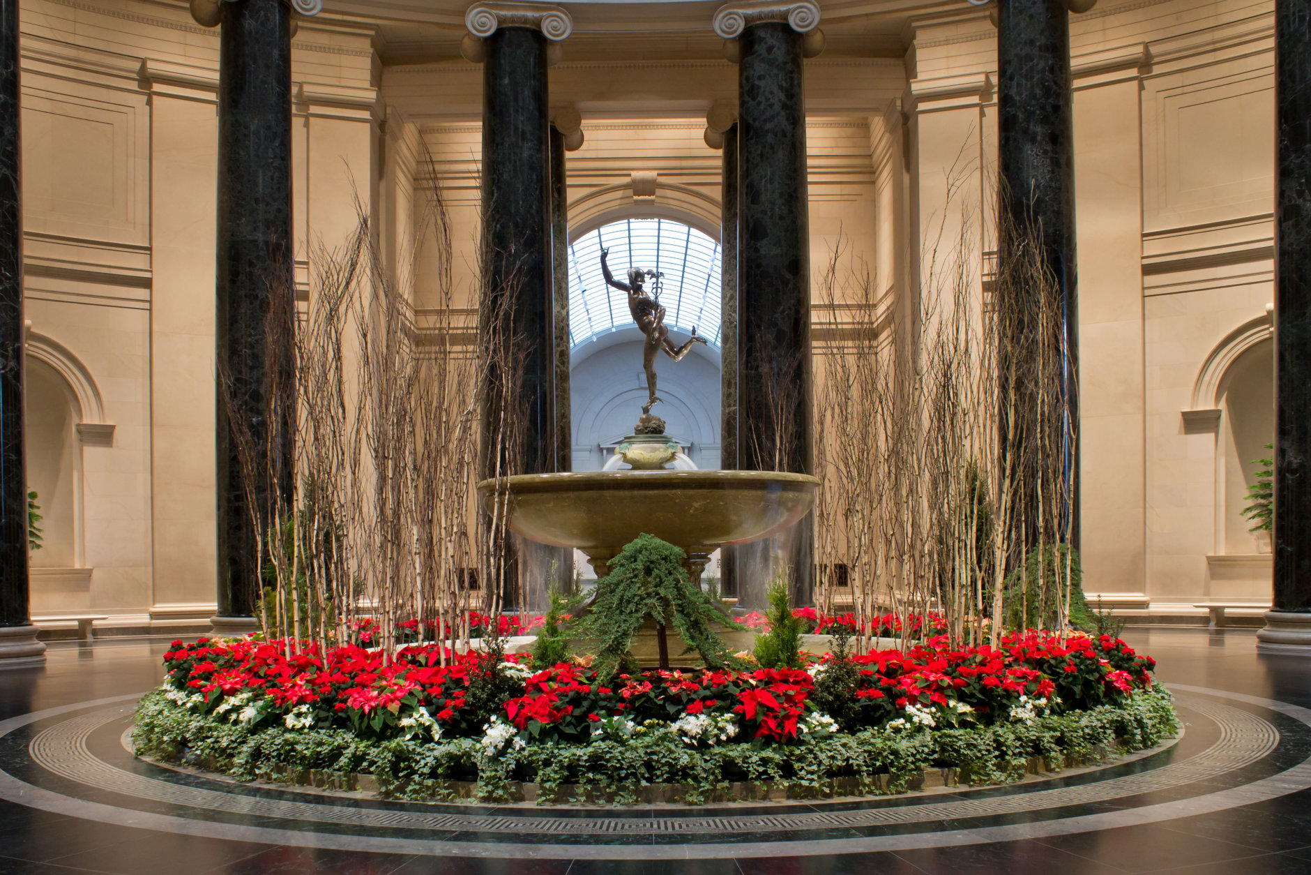 Stunning floral displays in the West Building Rotunda rotate throughout the winter and into spring and make the Gallery a classic holiday destination. (Courtesy National Gallery of Art)