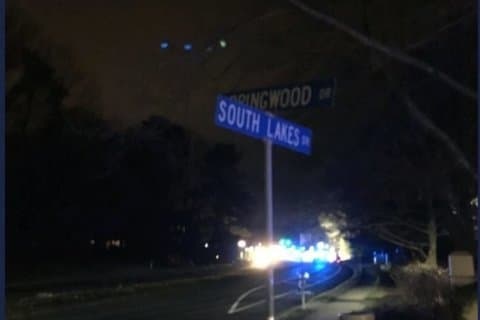 Police ask for help after teen killed in Reston hit-and-run
