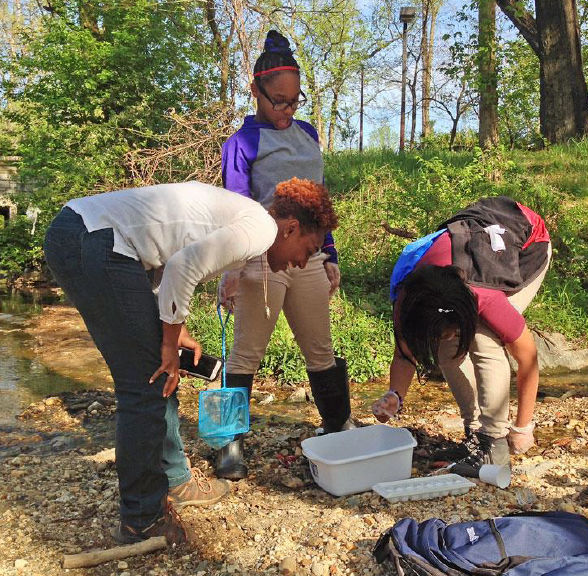 Students in Groundwork. D.C.'s youth programs use ANS' Creek Critters app to see what lives in the Watts Branch during the summer of 2016. (Courtesy ANS)