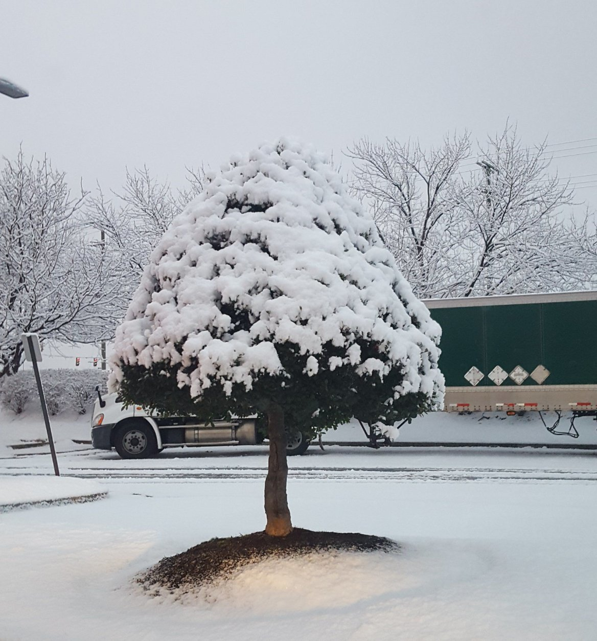 There's plenty of snow in Leesburg, Virginia. (Courtesy @sherrysherry1 via Twitter)