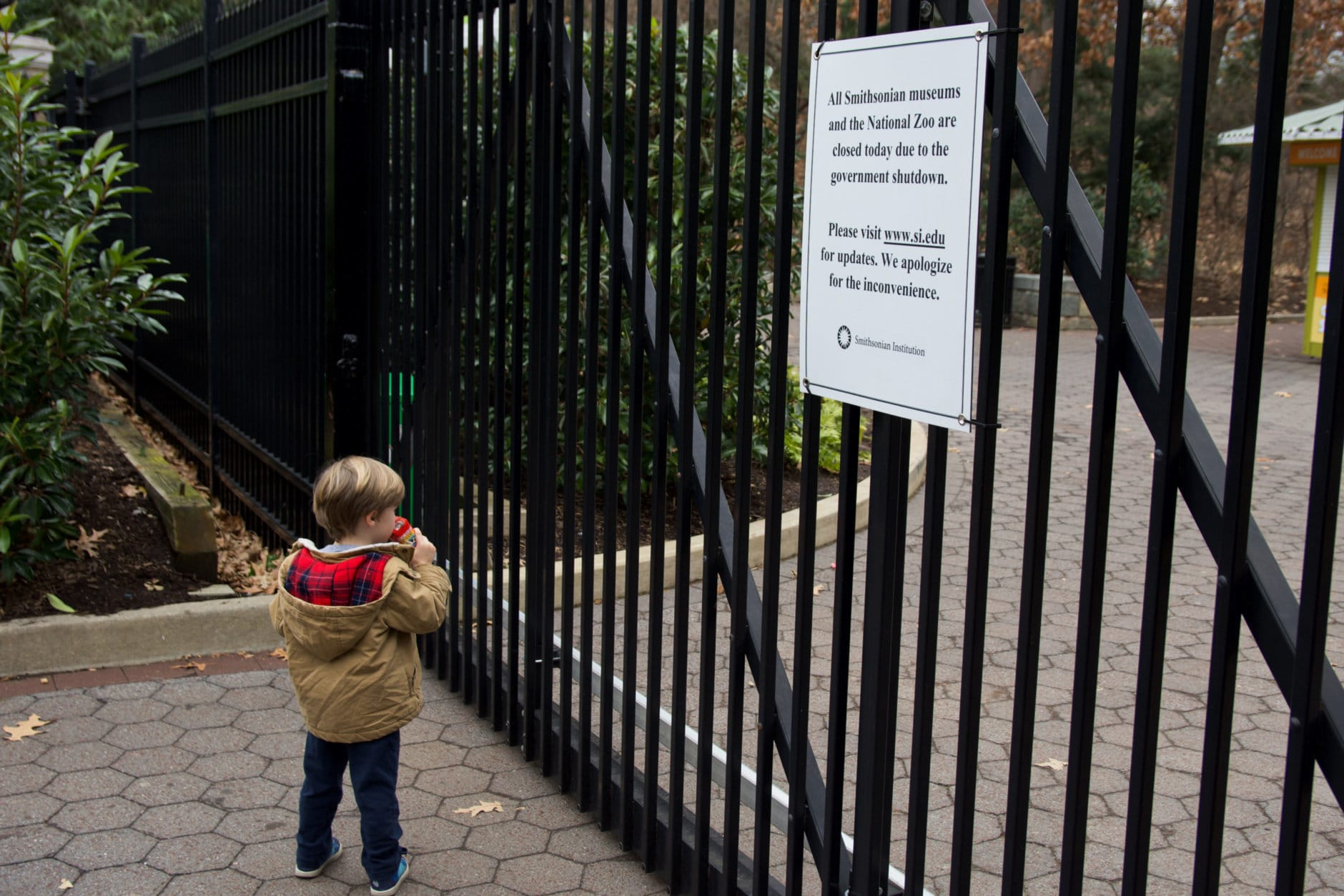 A young boy at the gates of the National Zoo on Wednesday, Jan. 2, 2019, during the government shutdown. (WTOP/Alejandro Alvarez)