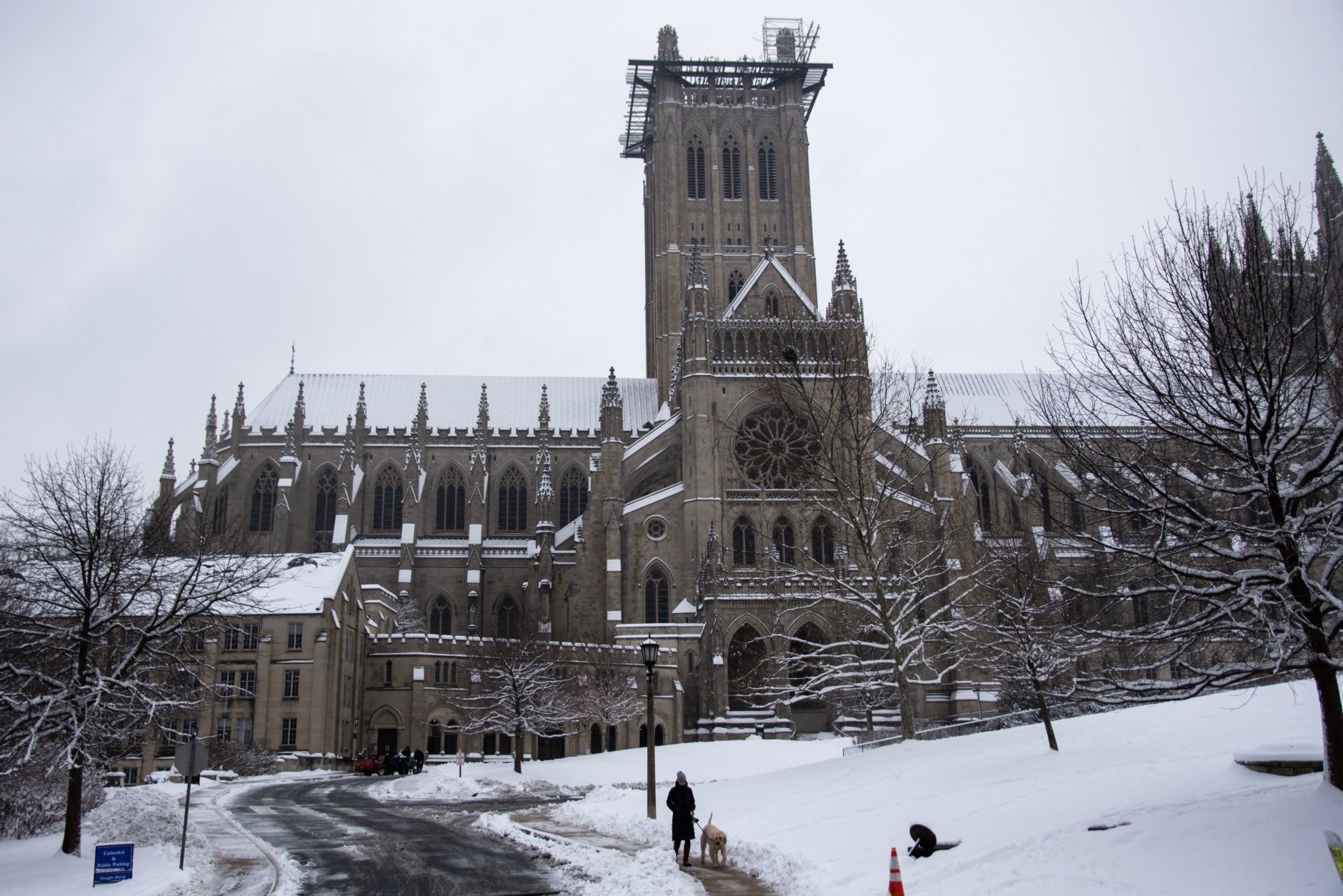 """<p><strong>Tour the National Cathedral</strong></p> <p>The <a href=""""https://cathedral.org/"""" target=""""_blank"""" rel=""""noopener"""">National Cathedral</a> is a great destination for those interested in learning more about art and history (the Cathedral offers several different <a href=""""https://cathedral.org/what-to-do/tours/"""" target=""""_blank"""" rel=""""noopener"""">tours</a>, including one that ends with a traditional English tea). It&#8217;s also perfect for those who like to wander (the gardens on the grounds are simply gorgeous). Pack your appetite: <a href=""""https://www.opencitycathedraldc.com/"""" target=""""_blank"""" rel=""""noopener"""">Open City</a> serves coffee, sandwiches and sweets in the Cathedral&#8217;s cafe. Or check out one of the many restaurants across the street, including <a href=""""http://www.cactuscantina.com/"""" target=""""_blank"""" rel=""""noopener"""">Cactus Cantina</a>, <a href=""""http://2amyspizza.com/"""" target=""""_blank"""" rel=""""noopener"""">2Amys</a>, <a href=""""https://www.barcelonawinebar.com/location/cathedral-heights/"""" target=""""_blank"""" rel=""""noopener"""">Barcelona</a> and <a href=""""https://www.thegrilledoystercompany.com/"""" target=""""_blank"""" rel=""""noopener"""">The Grilled Oyster Company</a>.</p>"""
