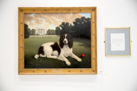 New dog museum unleashed in New York City