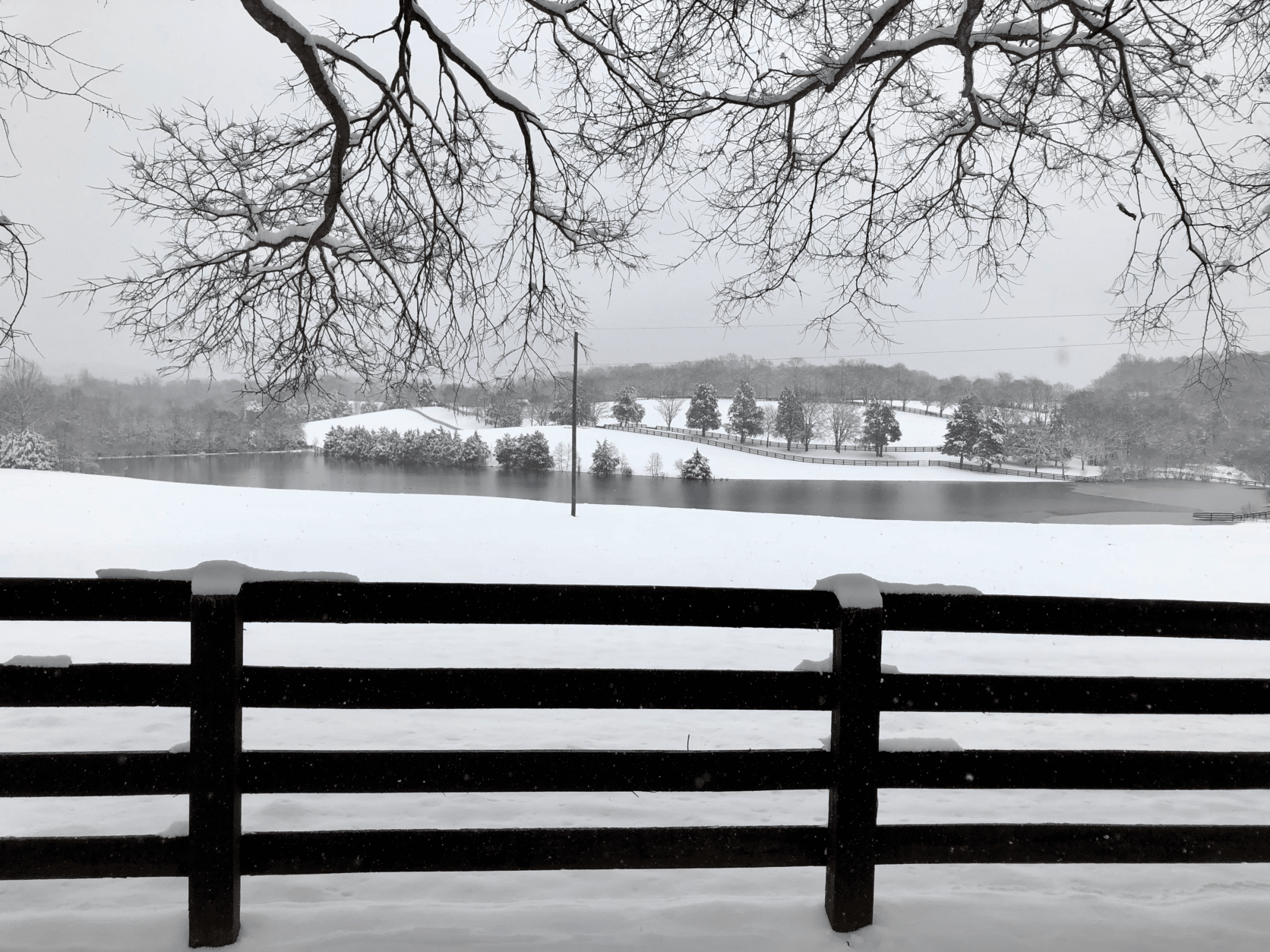 Here's a serene view from a farm near Orange, Virginia. (Courtesy Molly Moore)