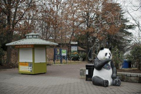 Zoo animals still need to be fed despite government shutdown
